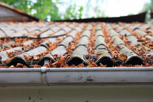 Lots of autumn leaves blocking a rain gutter on an old tile roof