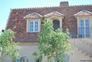 reclaimed french tile roof with very steep pitch and gables and tile roof fixture in Las Vegas