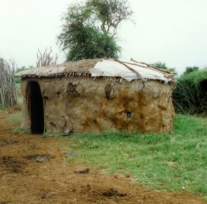 a hut made of clay standing in grass in africa