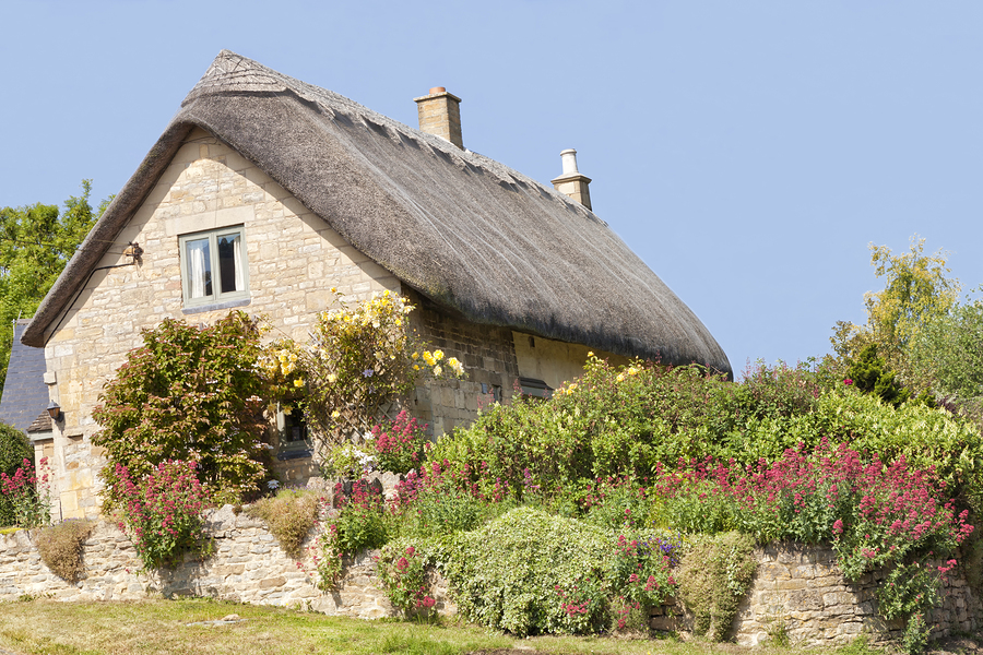 Traditional thatched roof stone Cotswold cottage with roses on the wall and flowers in the garden