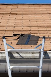 damaged shingle on roof next to a ladder signifying storm damage roof repair