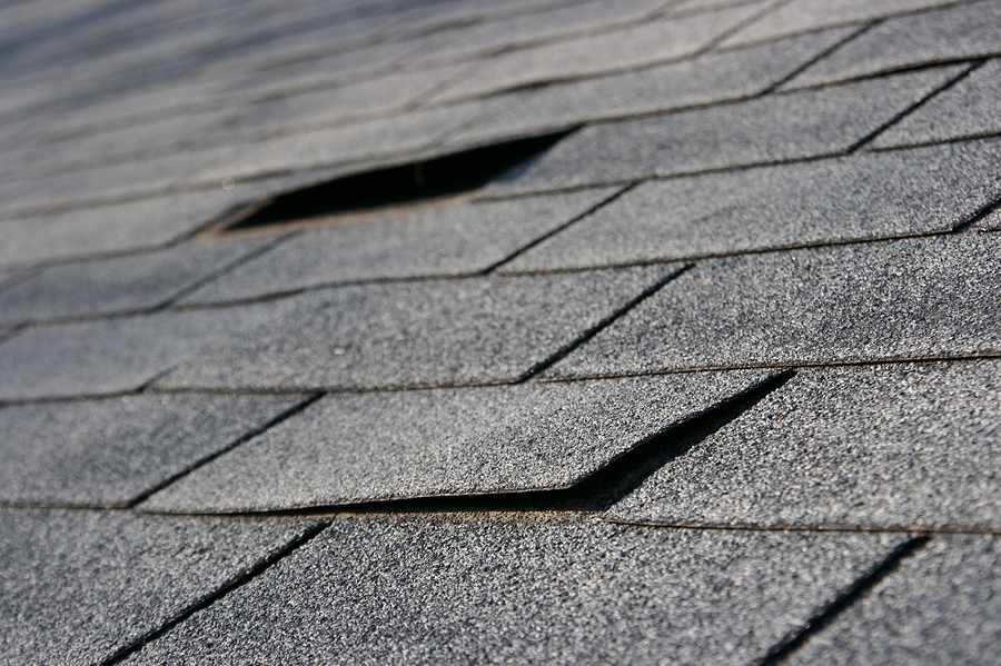 Roofing damage to asphalt shingles that needs repair showing shingles lifted by wind or heat damage