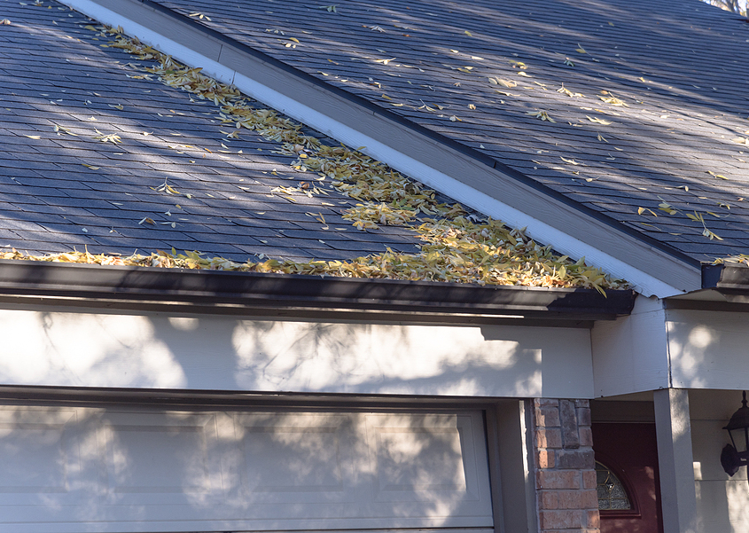 dried leaves clogging rain gutter on residential roof